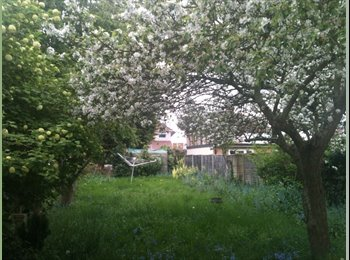 EasyRoommate UK - cosy room in a beautiful area of Greenwich, Charlton - £430 pcm