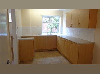 EasyRoommate UK - Room Available in Ashington, £175pcm, Bedlington - £175 pcm
