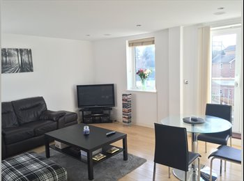 EasyRoommate UK - Double room with own bathroom, in bright modern flat. , Chelmsford - £615 pcm