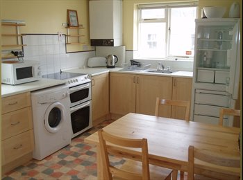 EasyRoommate UK - 2 Rooms Available in Lovely STUDENT 3 bed flat, close to university. Available September, Plymouth - £325 pcm