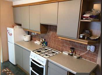 EasyRoommate UK - 2 Rooms available in 4 bedroom house, Middlesbrough - £200 pcm