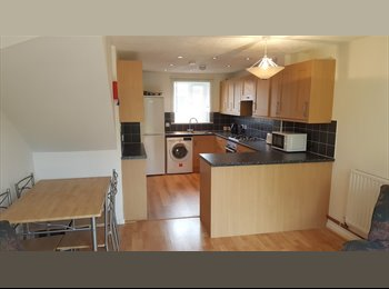 EasyRoommate UK - Very Large Bedroom in Professional House Share, Bedford - £650 pcm