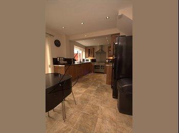EasyRoommate UK - Double Room in Kingston Park £450.00 pcm , Brunton Bridge - £450 pcm