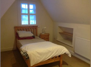 EasyRoommate UK - Rooms to let, Colchester - £320 pcm