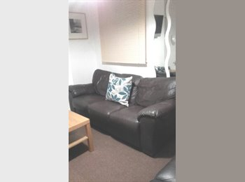 EasyRoommate UK - TS1 Room in a Student House Share, Middlesbrough - £312 pcm