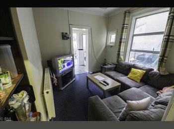 EasyRoommate UK - Single room for female in clean, quiet house, Turnpike Lane - £450 pcm