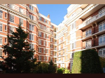 EasyRoommate UK - Large bright spacious 3 bedroom flat in a portered mansion block in the herat of Maida Vale W9, Maida Vale - £1,100 pcm