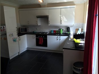 EasyRoommate UK - Nice room in newly decorated spacious detached house, Nuneaton - £450 pcm