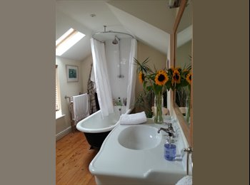 EasyRoommate UK - Beautiful Room In First Rate Victorian House, Bedford - £600 pcm