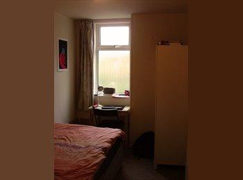 EasyRoommate UK - Room in Earsldon (Coventry), Earlsdon - £300 pcm