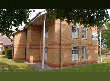 EasyRoommate UK - ***FANTASTIC DOUBLE ROOMS  £150PCM INCLUDING BILLS***, Middlesbrough - £150 pcm