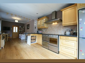 EasyRoommate UK - Rooms to rent in Stunning house Port Talbot, Port Talbot - £360 pcm