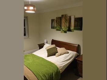 EasyRoommate UK - Large room to rent, Horsham - £500 pcm