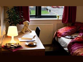 EasyRoommate UK - Laisteridge Student Village BD5 0NH, Little Horton Green - £220 pcm