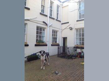EasyRoommate UK - Room in detached house, Sefton Park - £475 pcm