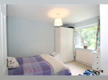 EasyRoommate UK - Nice 4 Bedroom House Share in Winchester, Winchester - £400 pcm