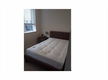 EasyRoommate UK - double room to rent in new home, Ardwick Green - £550 pcm