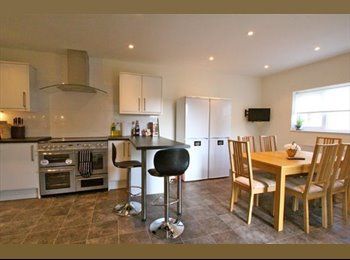 EasyRoommate UK - Beautiful all-inclusive double room in a professional, friendly house., Norcot - £625 pcm