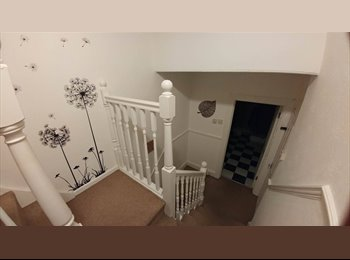 EasyRoommate UK - 12th MONTH IS RENT FREE! Room to rent in 4 bedroom house , Plymouth - £299 pcm