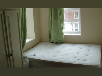 EasyRoommate UK - 2 Rooms in recently renovated friendly house close to City Centre, Exeter - £400 pcm