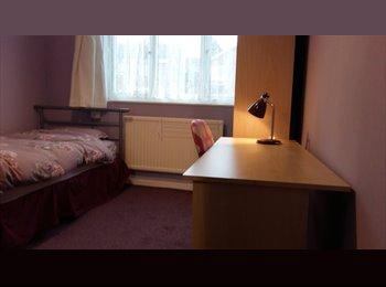EasyRoommate UK - Large Single Room, Llanelli - £350 pcm
