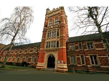 EasyRoommate UK - Quiet Room in Male Student Halls, Handsworth - £300 pcm