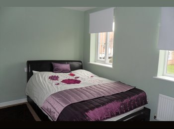 EasyRoommate UK - Lovely rooms in new build property, Stoke Aldermoor - £390 pcm