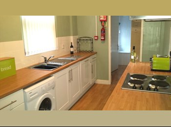 EasyRoommate UK - Lovely Double In Excellent Home, Fantastic Links To City Centre, Selly Park - £450 pcm
