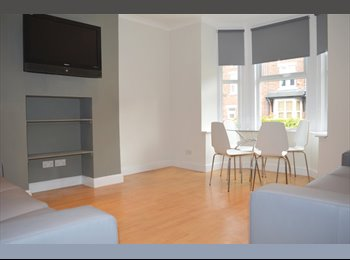 EasyRoommate UK - PROFESSIONAL HOUSE SHARE IN HEATON AVAIL 30/08 - £385/£400pcm, Heaton - £385 pcm