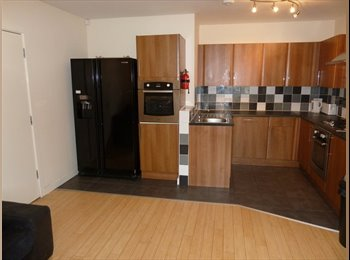EasyRoommate UK - 7 BED PROF HOUSE SHARE IN HEATON AVAIL 01/09 £400pcm, Heaton - £400 pcm