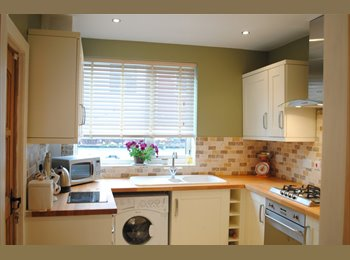 EasyRoommate UK - *REDUCED* URGENT Great Property for Mature Student or Professional, Wavertree - £265 pcm