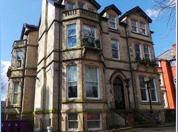 EasyRoommate UK - Lovely flat on Sefton Park, Dingle - £450 pcm