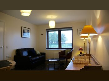 EasyRoommate UK - A stunning modern double bedroom with loads of storage and great public transport, Drylaw - £415 pcm