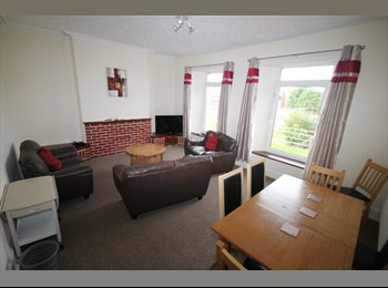 EasyRoommate UK - Spare room available in Student property 4 minutes from Plymouth Uni Campus , Plymouth - £399 pcm