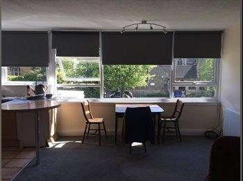 EasyRoommate UK - room to rent in a bright airy 2 bedroom flat, Kingsdown - £450 pcm