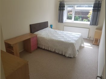 EasyRoommate UK - Very large furnished room in 2 bed 1000sqft ground floor flat. Garden and Parking., Tolworth - £625 pcm