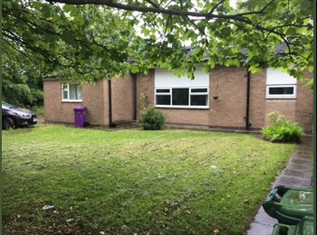 EasyRoommate UK - Rooms Available in Netherly from £190PCM!, Netherley - £190 pcm