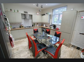 EasyRoommate UK - Gorgeous Room to rent in 6 bed property in Woodhouse, Potternewton - £498 pcm