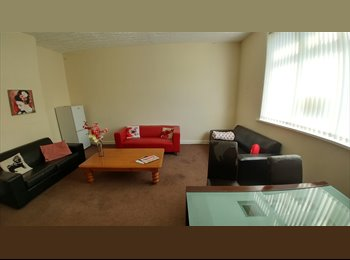 EasyRoommate UK - Cheap & Cheerful room in Salford, Cheetham Hill - £330 pcm