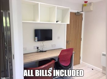 EasyRoommate UK - Student Apartment to Rent, Bournbrook - £650 pcm