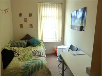 EasyRoommate UK - 5 Bedroom Student House Bedford Street Roath, Plasnewydd - £290 pcm