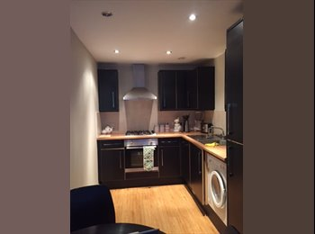 EasyRoommate UK - Amazing room in an amazing flat in an amazing location,, Leeds - £560 pcm