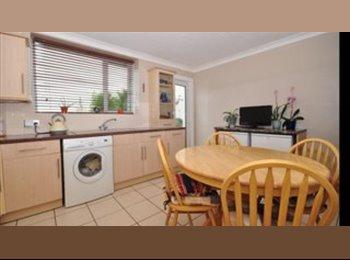 EasyRoommate UK - Double Room in Chatham, Gillingham - £350 pcm