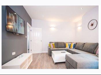 EasyRoommate UK - Double room for rent (shared house) Lenton Nottingham £117pw, Lenton - £468 pcm