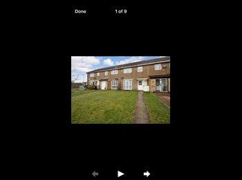 EasyRoommate UK - Spasious double room for one person 120£ p/w , Hemel Hempstead - £530 pcm