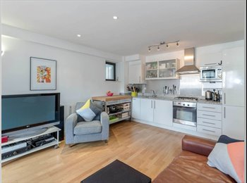 EasyRoommate UK - LOVELY & BEAUTIFUL FURNISHED 1BEDROOM APARTMENT, Lampton - £750 pcm