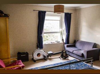 EasyRoommate UK - Spacious room in 3 bedroom top floor flat, Sneyd Park - £433 pcm