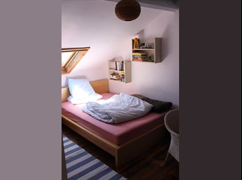 EasyRoommate UK - Room to rent for the summer and after, Aberystwyth - £300 pcm