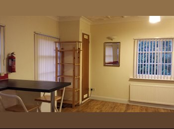 EasyRoommate UK - Two Bedroom Modern Flat Liverpool City Centre , Liverpool - £900 pcm
