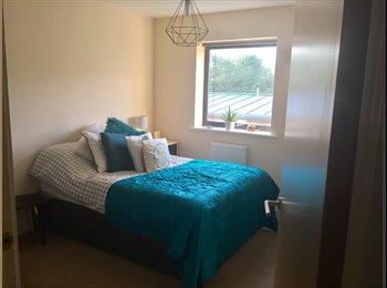 EasyRoommate UK - Double room with own bathroom , Redfield - £500 pcm